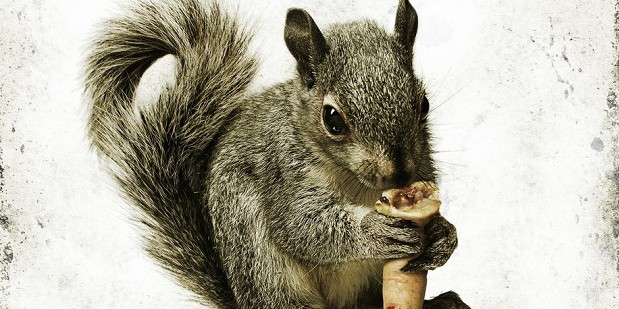 Teaser póster de Squirrels