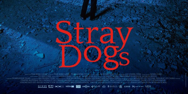 Póster de Stray Dogs