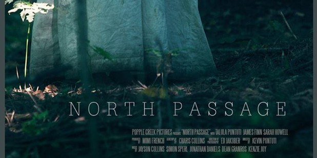 Póster de North Passage