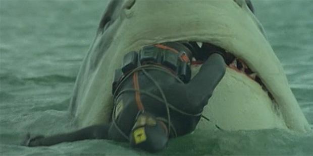El ultimo tiburon-2