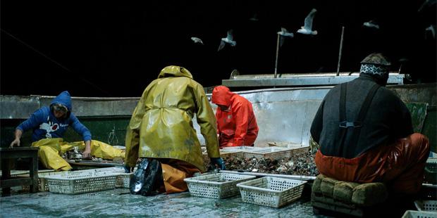 fishingbodies03
