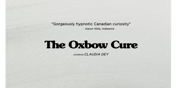 Póster de The oxbow cure