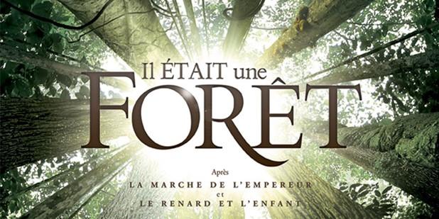 Póster de Il était une forêt