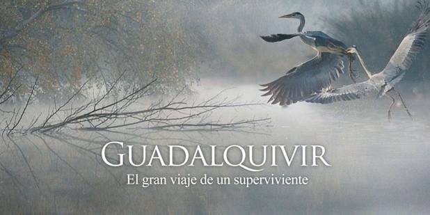 Teaser póster de Guadalquivir