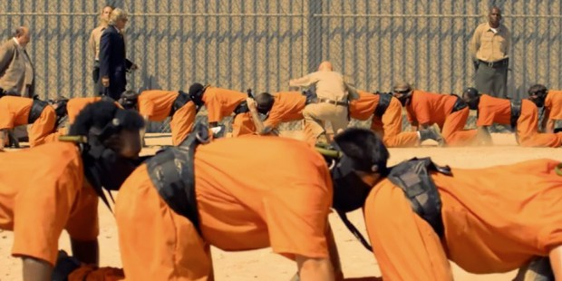 The human centipede-3