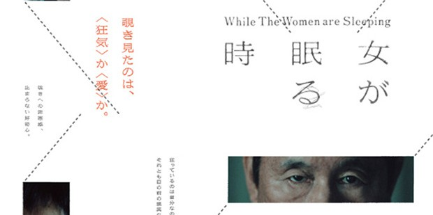 Póster de While the Women Are Sleeping
