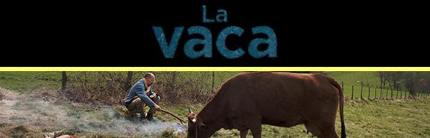 La vaca-estreno