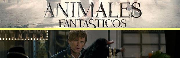 Animales fantasticos-estreno